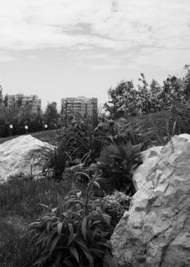 gradina pe malul lacului